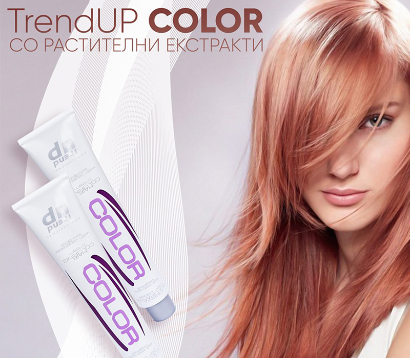 Trend Up Color